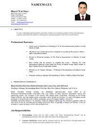 Sample Resume For Merchandiser Job Description Resumenadeem100phpapp100100phpapp100thumbnail100jpgcb=13100979100703 86