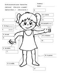 Body Parts Vocabulary Information Gap Activity Spanish By