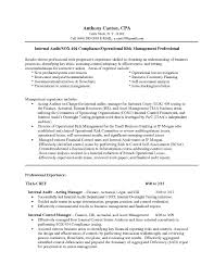 Internal Auditor Resume Sample Of Audit Executive Format Template