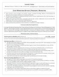 Cfo Resume Example Download Resume Sample Cfo Cv Example Uk ...
