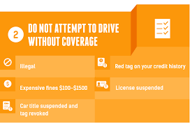 20 best car insurance for no license drivers images on insurance quotes without license raipurnews