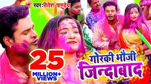 tik tok video 2020 ka bhojpuri sae