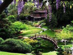 5 san francisco botanical garden san francisco step into the best botanical gardens