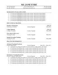 Cv Template Volunteer Work Custovolunteer Work On Resume resume sample
