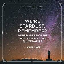 Stardust Quotes Amazing We Are Stardust Quote Quotes