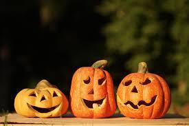 Jack O Lantern Grow Big Pumpkins For Jack O Lanterns