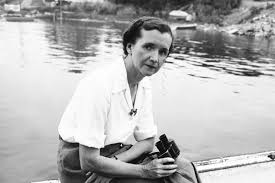new documentary explores the life and legacy of rachel carson environmentalist and writer rachel carson at woods hole massachusetts 1950 photo courtesy the linda lear center for special collections archives