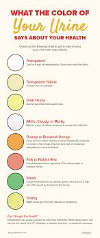 Urine Color And Clarity Chart What The Color Of Your Urine Says About Your Health