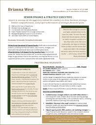 Coo Resume Template International Executive Coo Resume Example Resume Examples Award 11