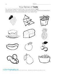 5 Senses Coloring Page Five Senses Worksheets Preschool Beautiful 5