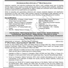 Resume Preparation Service New Professional Resumes Writing Service