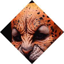 face with flower cover jaguar makeup
