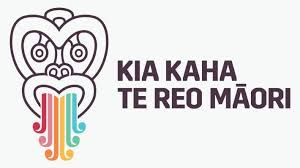 Two approaches to building up your te reo vocabulary | Stuff.co.nz
