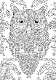 Small Picture Printable 30 Adult Coloring Pages Owl 9161 Adult Coloring Book