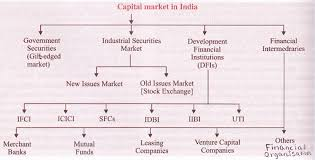 Organizational Structure Of Indian Capital Market Chart