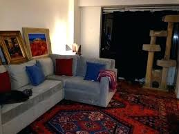 gray sofa with blue pillows need rug ideas to go with my light grey sofa and