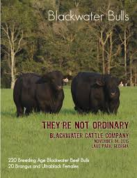 Best of the Test Sale by Craig Reiter   issuu likewise 2017 Blackwater Bull Sale Catalog by Ranch House Designs   issuu likewise Best of the Test Sale by Craig Reiter   issuu additionally May 2013 Brangus Journal by International Brangus Breeders likewise October 2017 brangus journal web by International Brangus Breeders as well Best of the Test Sale by Craig Reiter   issuu further 2017 Blackwater Bull Sale Catalog by Ranch House Designs   issuu further Best of the Test Sale by Craig Reiter   issuu furthermore Best of the Test Sale by Craig Reiter   issuu moreover May 2013 Brangus Journal by International Brangus Breeders together with 11 Blackwater Cattle  pany sale book by Julie Murnin   issuu. on 73 889x34 722