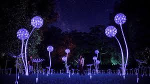 Botanical Gardens Nights Of Lights Botanical Gardens Miami Light Show Home Garden