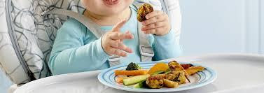 Ăn Dặm Bé Chỉ Huy Online - Baby Led Weaning - BLW