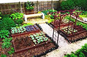 Small Picture Home Vegetable Garden Design Ideas Home Design Ideas