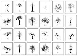 21 Best Pruning Dividing Images On PinterestFruit Tree Shapes