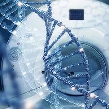 исследования раковых клеток