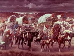 impact of n removal act impact of n removal act of  the trail of tears