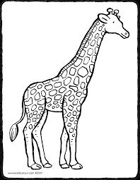 Giraf Kiddicolour