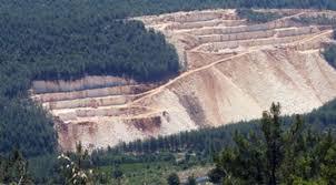 torba yasa orman tahsisleri maden ile ilgili görsel sonucu