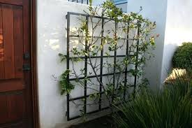 wrought iron wall trellis outdoor wrought iron wall trellis