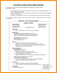 10 What To Write On Resume Objective Agenda Example