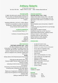 Examples Of Teenage Resumes New 48 Easy Resume Format Free Template Best Resume Templates