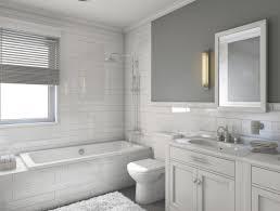 bathroom : Bathroom Cleaners Amazing Bathroom Cleaner DIY All ...