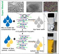 Functionalized Magnetic Biopolymeric Graphene Oxide With Outstanding