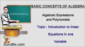 introduction to linear equations in one variable math lessons