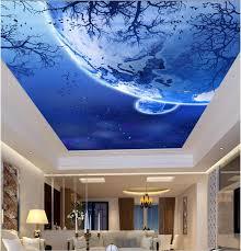 3d Plafond Muurposters Papier Foto Ster Vogels In Bomen Schilderen