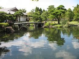 garden pond supplies. Koi Fish For Sale Phoenix Ponds, Aquatic Plants And Water Gardens Peoria Az Garden Pond Supplies