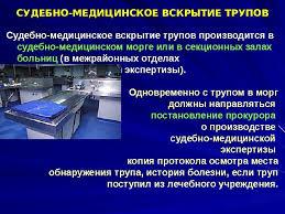 Реферат Судебная экспертиза Государство и право Предмет судебной экспертизы реферат