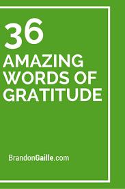 36 Amazing Words Of Gratitude Messages Words Of Gratitude Words