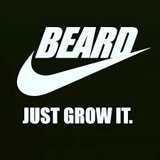 Image result for growing a beard meme