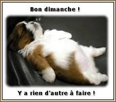 """Résultat de recherche d'images pour """"dimanche humoristique"""""""