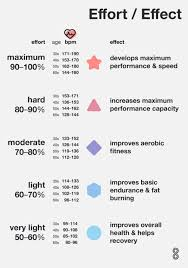 Heart Beats Per Minute Chart What Is Fat Burning Zone How To Calculate Your Rate 8fit