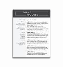 Simple Job Resume Template Luxury Cv Examples For Retail Jobs