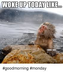 Good Morning Monday Photos In Funny WOKE UP TODAY LIKE DAVE Goodmorning Monday Funny Meme On Esmemes 21