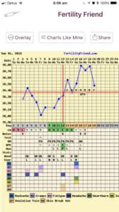 Could This Be My Implantation Dip Anyone Familiar With Bbt