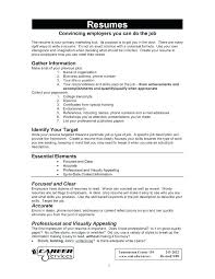 Build A Resume Free Online Mesmerizing How To Make A Resume Free Download Holaklonecco