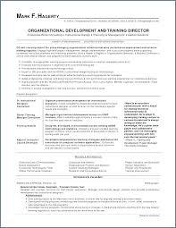 Construction Resume Sample Spacesheepco Custom Construction Resume Examples