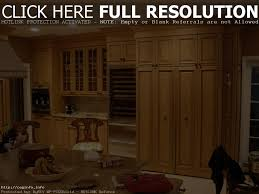 Kitchen Bookcase Kitchen Narrow Kitchen Cabinets With Doors Tall Narrow Kitchen