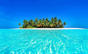 Best Tropical Wallpapers - Top Free ...