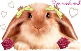 Image result for GIF BON WEEKEND